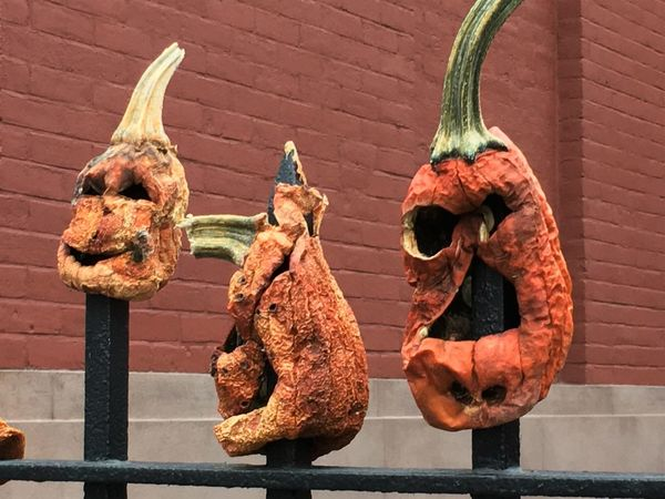 Brooklyn Animal Representation Architecture Building Exterior Built Structure Close-up Day Dragon Gargoyle Gourds No People Outdoors Spiked Pumpkins
