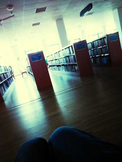 the library in the afternoon