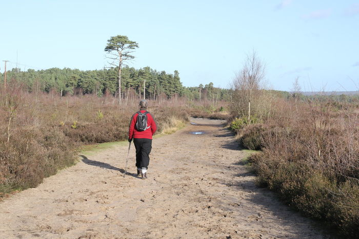 Hiking Surrey Thursley Common Beauty In Nature Clear Sky Day Grass Growth Healthy Lifestyle Landscape Leisure Activity Lifestyles Nature One Person Outdoors Outdoors, Outside, Open-air, Air, Fresh, Fresh Air, Plant Real People Rear View Road Scenics Sky The Way Forward Walking