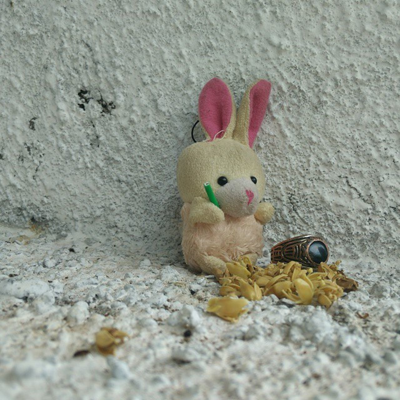 no people, animal representation, celebration, stuffed toy, tradition, easter, close-up, indoors, day