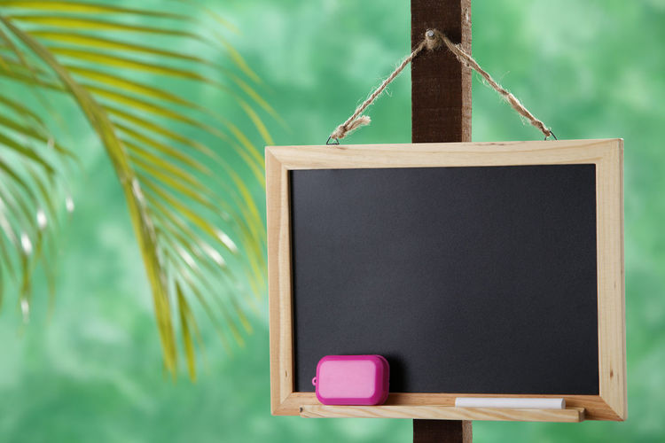 the blackboard at outdoor Blackboard  Education Chalk Classroom Backgrounds Billboard Blank Textured  Advice Writing Empty Organisation Communication Data Message To Do List Reminder Copy Space No People Close-up Hanging Focus On Foreground Indoors  Still Life Board Art And Craft Wood - Material Equipment Green Color Black Color Chalk Eraser Düster Palm Tree