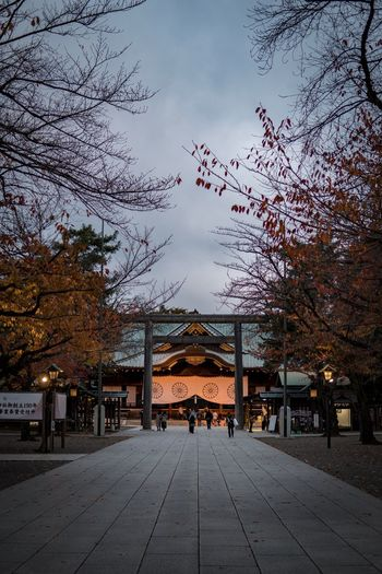 Japan Photography Japan Shrine Yasukuni Shrine Tree Outdoors Built Structure Building Exterior Real People The Way Forward Sky Nature Branch Architecture Men Night Illuminated City Beauty In Nature People
