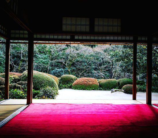 詩仙堂 一乗寺 Relaxing Kyoto 京都 庭園