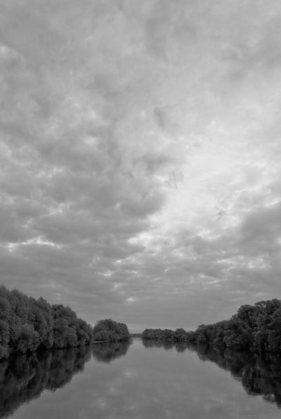 Dramatic sky over Warta river Dramatic Sky Sky And Clouds Warta Warta River Mouth Landscape Park Beauty In Nature Black And White Cloud - Sky Day Dramatic Landscape Mysterious Nature No People Outdoors Riverbank Scenics Sky Tranquil Scene Tranquility Tree Warta River Water Waterfront
