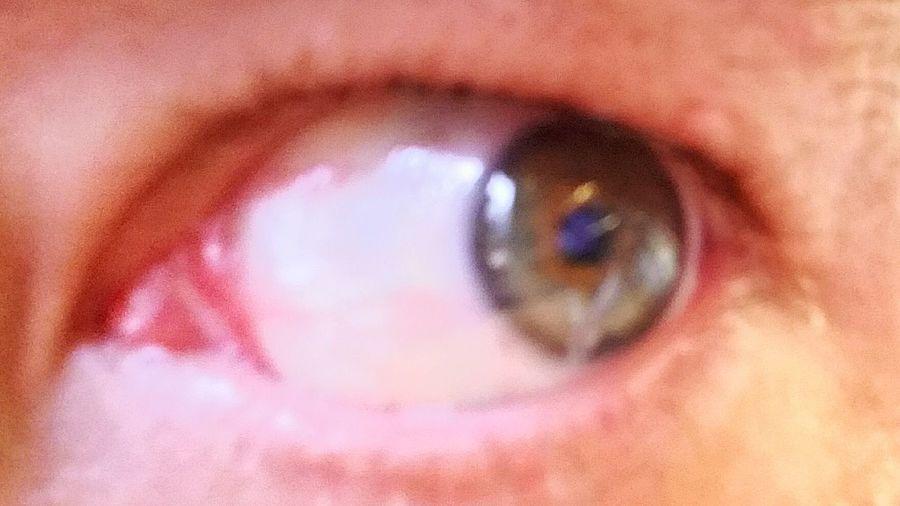 Eye Eyes Eyeball Eyeballl Eyeball:) Eyeballs. Eyeball. Eyeball Portrait Eyeballart Eyeballs  Eyeball (·)(·) ! Human Body Part Human Eye Human Eyes Human