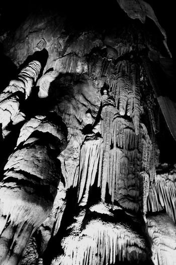 단양 고수동굴 Caves