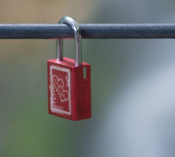Close-up of love padlocks hanging on railing