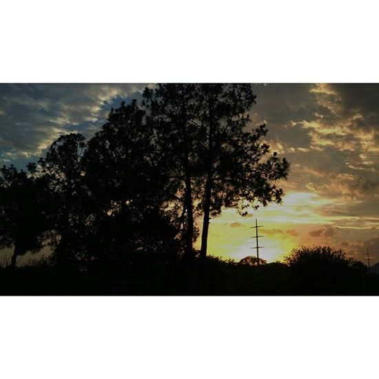 Beautiful Islamabad sunset. Islamabad Pakistan Aimanadeel Sunset Sunset_madness Sunsets Sunsetlovers Sunsetsniper Photographerslifeforme Photooftheday Orange Yellow Blue Silhouette Trees Nature Love Evening Nofilter