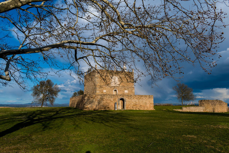 Castle of Abrantes Portugal Ancient Architecture Bare Tree Building Exterior Built Structure Castle Day Grass History Nature No People Old Ruin Outdoors Place Of Worship Religion Sky The Past Tree Go Higher