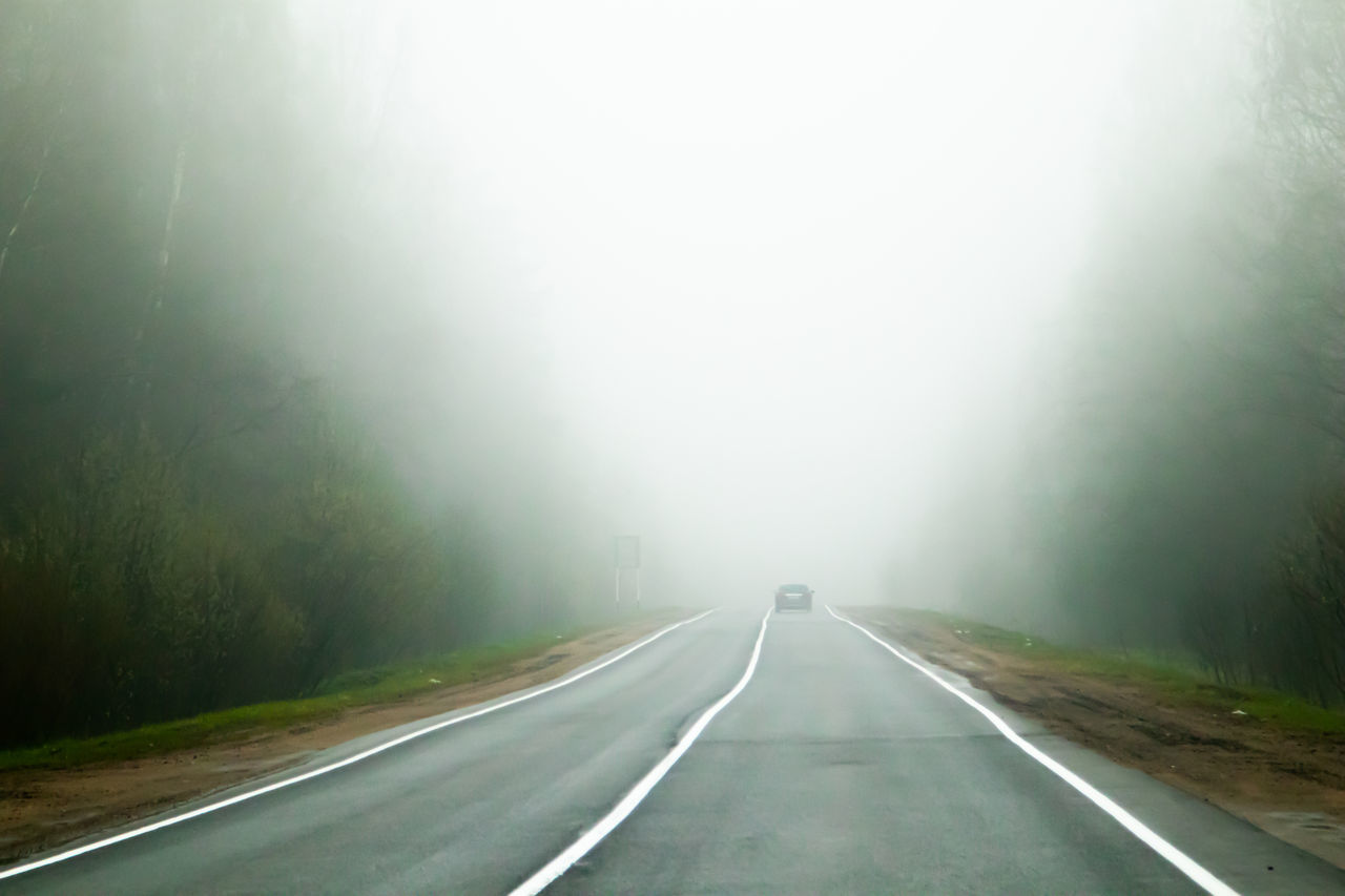 EMPTY ROAD ALONG TREES AND FOG