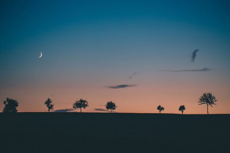 Dark Pastel Power Beauty In Nature Day Flying Friendship Last Light Mid-air Moon Moonlight Nature No People Orange Color Outdoors Pastel Colors Scenics Silhouette Sky Sundown Sunset Togetherness Tranquil Scene Tranquility Tree EyeEmNewHere