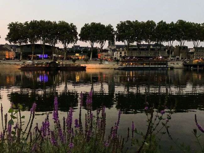 Evening in Orléans 😀 France Reflection Tree Water Boats City Lights Flower Colors Moments Mobilephotography EyeEm IPhoneography Moment Iphoneonly IPhoneography Outofthephone Travel Destinations Reflection Sunset Tourist Attraction