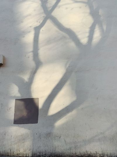 High angle view of shadow on wall