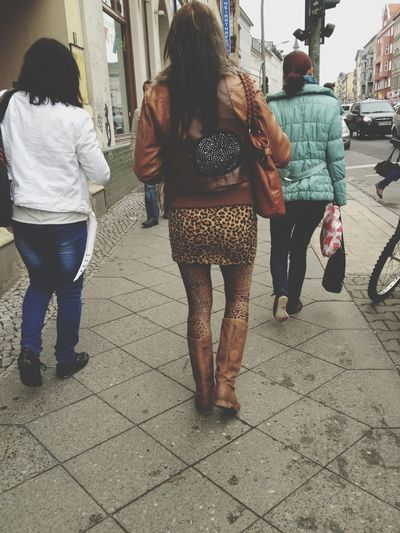 Meow Strange Fashion