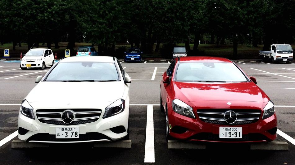 White & Red New Mercedes