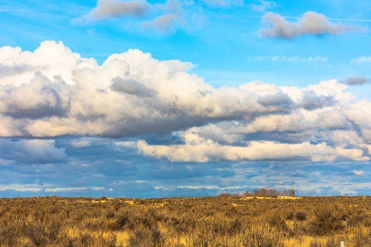 Clouds And Sky Nature Beauty In Nature Large Cloud Desert Landscape Desert Beauty Clouds Over Desert Eastern Washington