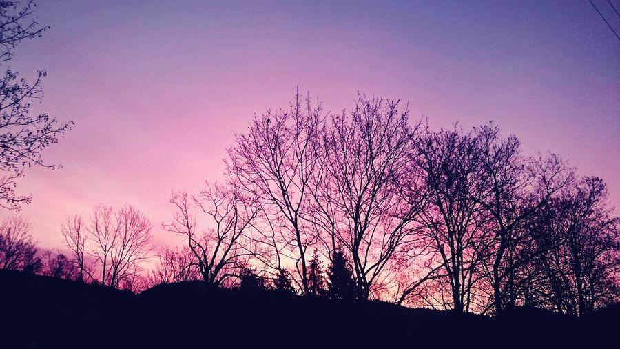 6amwakeup Skyline Amazing View Pink Sky Lovely Autumn🍁🍁🍁 Trees Morning Light IneedSleep Rising Sun