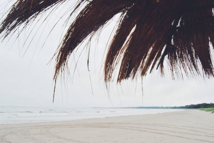 A rainy day at beach Beach Rainy Day Cloudy Sand Sky Parasol Beach Photography Summer Seascape Beach Time Sea And Sky Summetime Beachphotography Beachlovers Beach Walk Summer Views Summertime Beach Day Beachlife Scenics Nature_ Collection  Beach Life