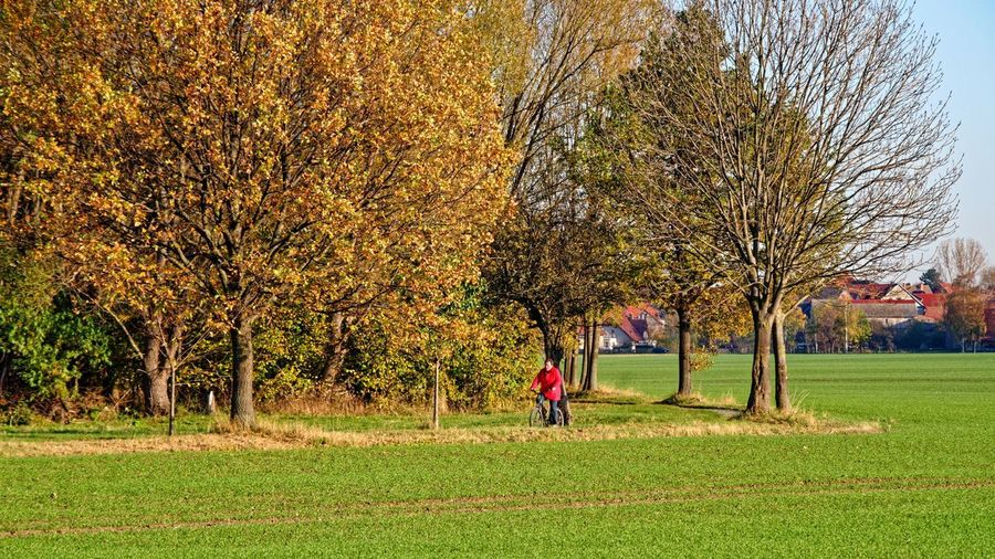 Man in park during autumn