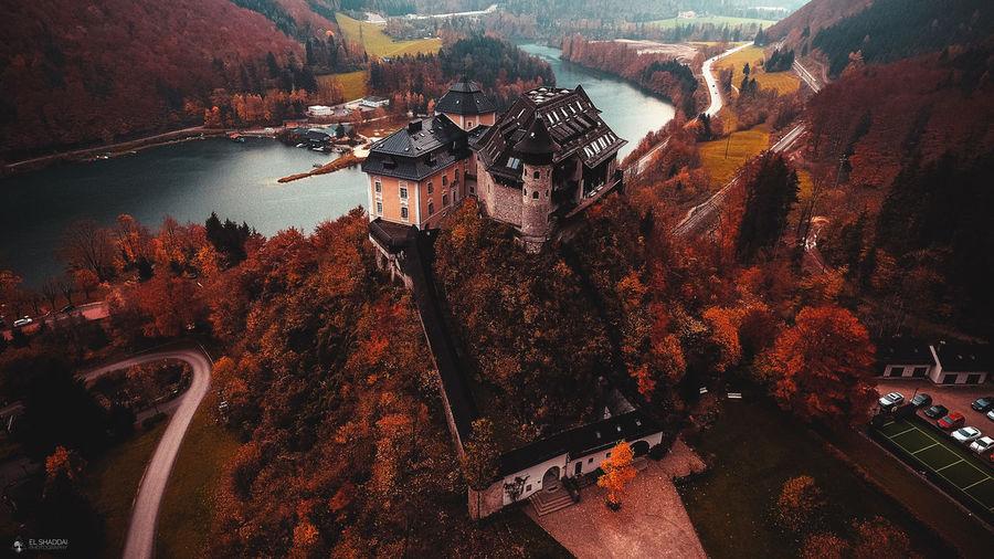 Autumn Autumn Colors Autumn Leaves Autumn🍁🍁🍁 Baum Biebelschule Bäume Schloss Schloss Klaus Wald