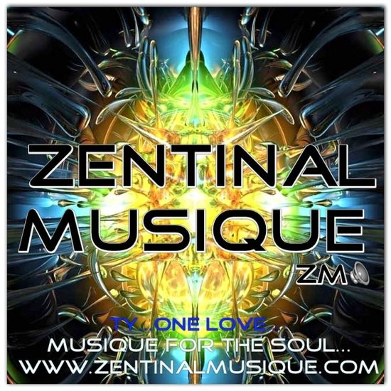 Zentinal Musique Dnb Record Label Studio