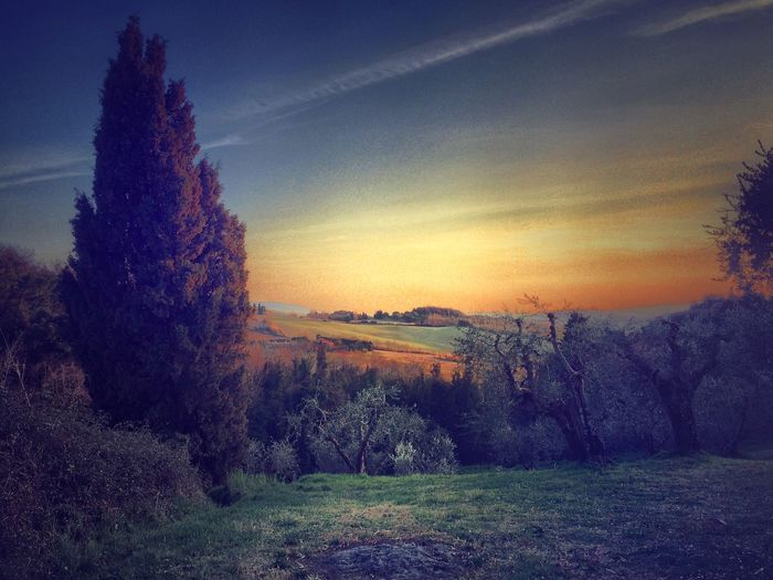 EyeEm Best Shots - Landscape AMPt_community IPhoneography EyeEm Best Shots WeAreJuxt.com