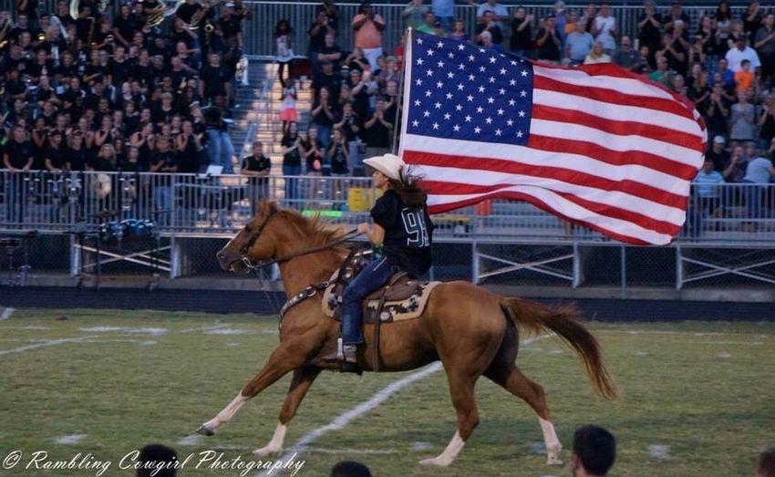 NorthWood High School Football Horse Horses Animals