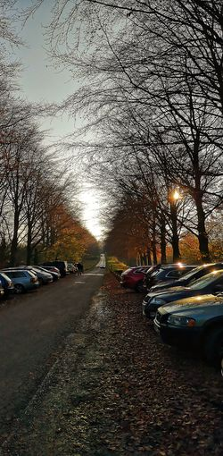 Into the Distance Autumn Bristol Autumn colors Trees And Sky Cars Aesthetics Park Wood Fall Tree Car Sunset Sky Land Vehicle Side-view Mirror Car Point Of View Change Leaves Parking Moving Autumn Mood EyeEmNewHere