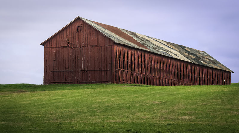 Connecticut Hilltop Tobacco Barn with Varried Shingles Barn Connecticut Tobacco Barn Agriculture Barn Barn Red Field Grass Hilltop Landscape No People Shade Tobacco Shed Shingles