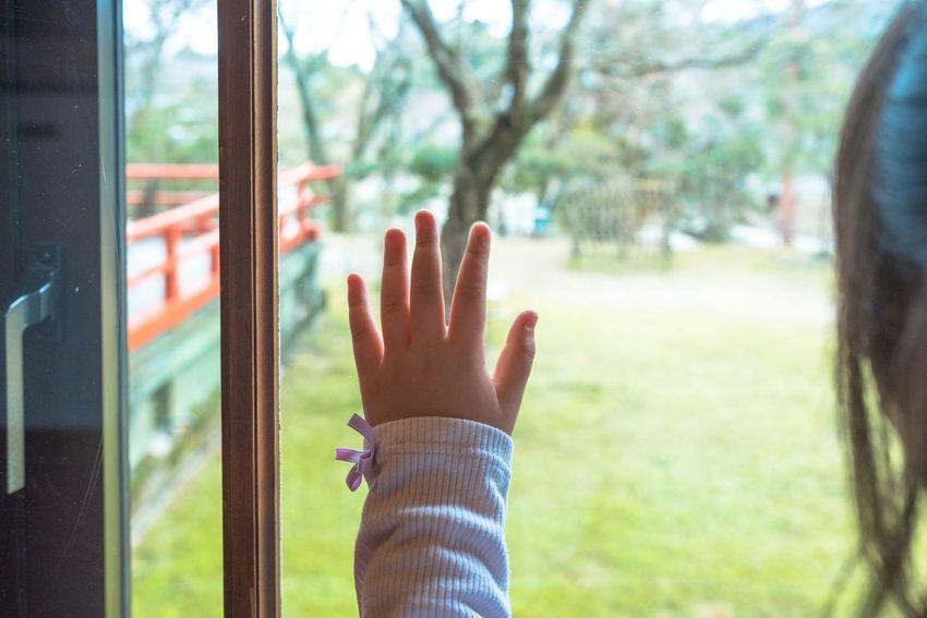 Not yet come. Nara Japan Narahotel Hand Childhand Green 奈良 日本 奈良ホテル 子供の手 グリーン Nakaming なかみん Girl Power