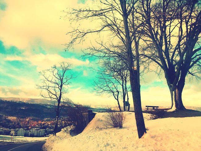 Good Times Enjoying Life Hello World Winter
