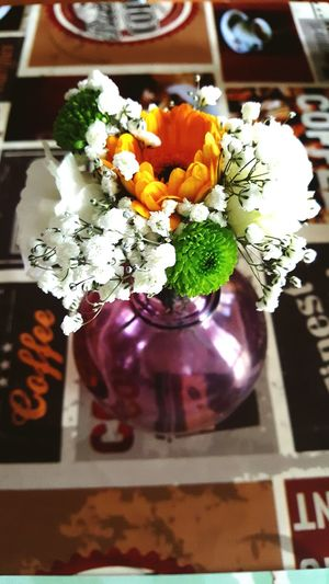 Flower Indoors  Freshness Close-up Bouquet Flower Head Flowers Flower Collection Coffe Breakfast Good Morning Good Times