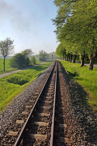 Bad Doberan Grass Mecklenburg-Vorpommern Mecklenburg_vorpommern Nature No People Outdoors Plant Rail Transportation Railroad Track Railway Track The Way Forward