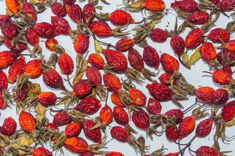 on a white background dried rose hips closeup Abundance Arrangement Background Backgrounds Berry Briar Close-up Decoration Design Dogrose Full Frame Healthy Eating Herb Hip Large Group Of Objects Medicine Nature No People Red Tea Vitamins White Wildberries Wildrose Beautifully Organized Visual Feast