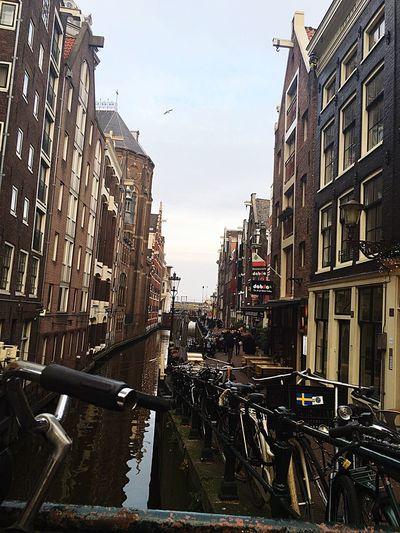 Amsterdam ✨
