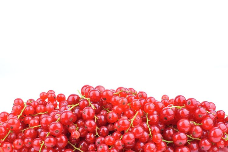 Close-up of cherries against white background