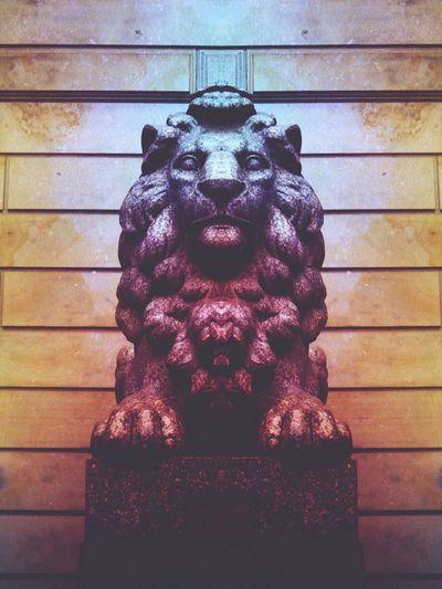 Lion Lion King  Monument Stein Stone Standing Statue Edit View Waechter Museum Picturing Individuality Loewe Illustration Aura ArtWork Brick Wall Brickporn Gradient Texture Hardlight LifeLess Still Life StillLifePhotography Color Portrait