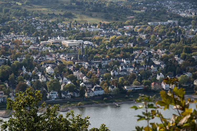 Mehlem (linkes Rheinufer) Autumn Day Elevated View No People Remote Residential Areas Rhein Rhine River Rhine Town TOWNSCAPE Trees Water