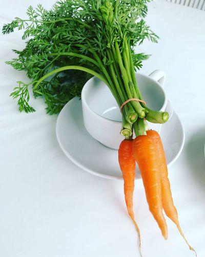 Fresh carrot Carrot Freshvegetables Garden Freshfromgarden