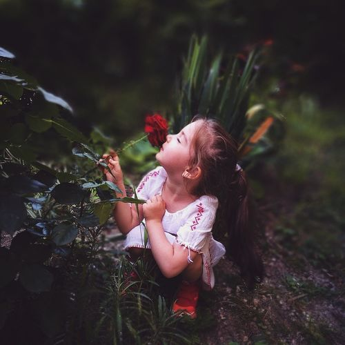 Girl Smelling Rose While Crouching On Field