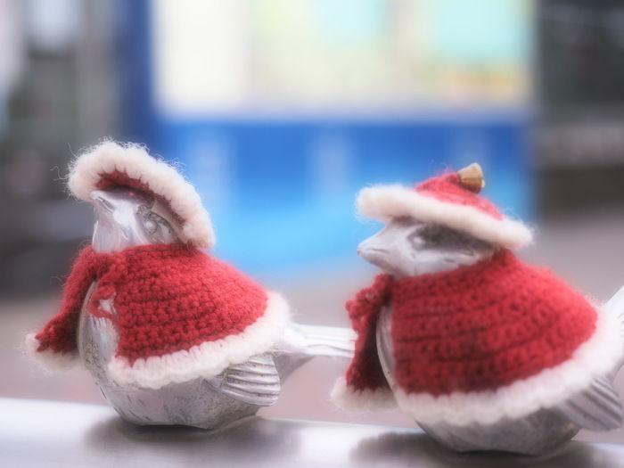 スズメもサンタのコスプレ?(笑) Sparrow Santa Claus Merry Christmas! Happy Cristmas Snapshot Enjoying Life Depth Of Field