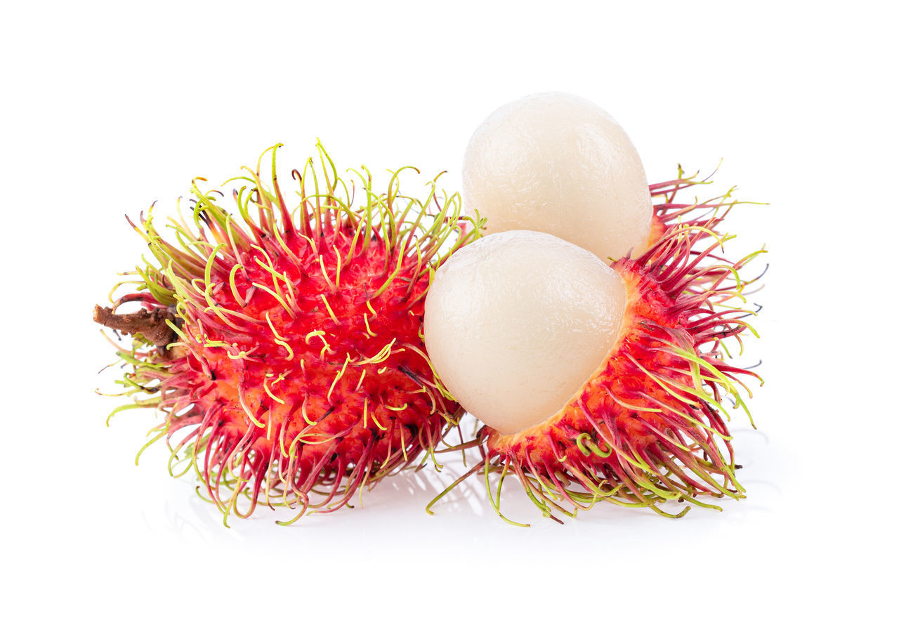white background, studio shot, freshness, food and drink, food, red, still life, indoors, close-up, wellbeing, fruit, cut out, healthy eating, no people, group of objects, lychee, tropical fruit, copy space, flower, group