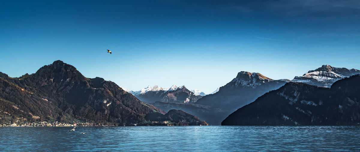 Mountain Water Beauty In Nature Sky Scenics - Nature Waterfront Tranquil Scene Tranquility Bird Mountain Range Flying Animals In The Wild Vertebrate Animal Themes Clear Sky Sea Nature Animal No People Outdoors Formation