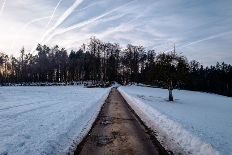 Road Amidst Trees Against Sky During Winter