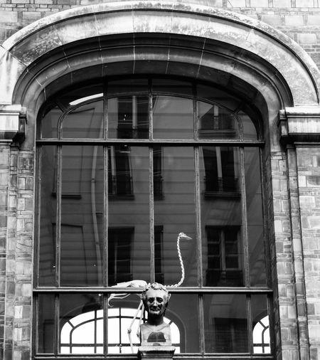 Strange !! Streetphotography Statue Sculpture Jardin Des Plantes  Skeleton Paris Blackandwhite