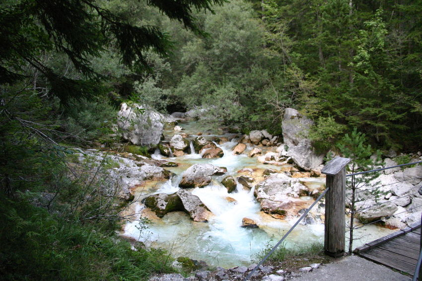 River Soča, Slovenia Vacations Beauty In Nature Clear Water Day Forest High Angle View Nature No People Outdoors Travel Destinations Tree