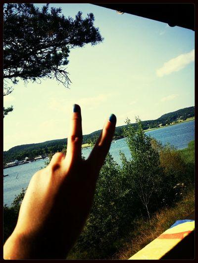 Summer? Sunshine Relaxing Sea Peace ✌