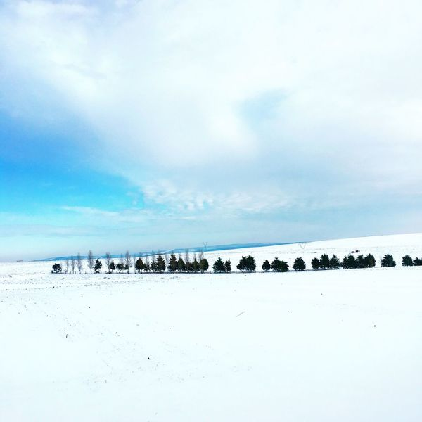 Snow Nature Sky Winter Cold Temperature Beauty In Nature Outdoors No People Landscape Trees