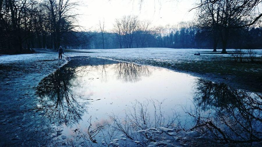 Inthepark Winter Wintertime Frozen Nature Frozen Frost Vereist Arschkalt Rutschig Iced Ice Berlin Schillerpark Boy