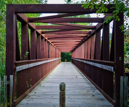 Steel bridge in park The Way Forward Direction Bridge Architecture Built Structure Connection Wood - Material Day Diminishing Perspective Bridge - Man Made Structure No People Outdoors Plant Footbridge Railing Metal Nature Tree Footpath Empty